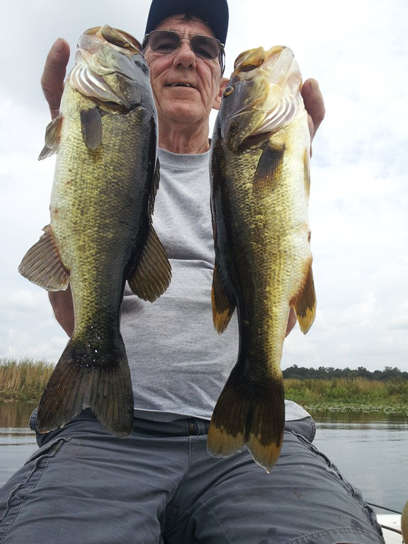 East Toho Lake Fall Bass Fishing Report Orlando Bass