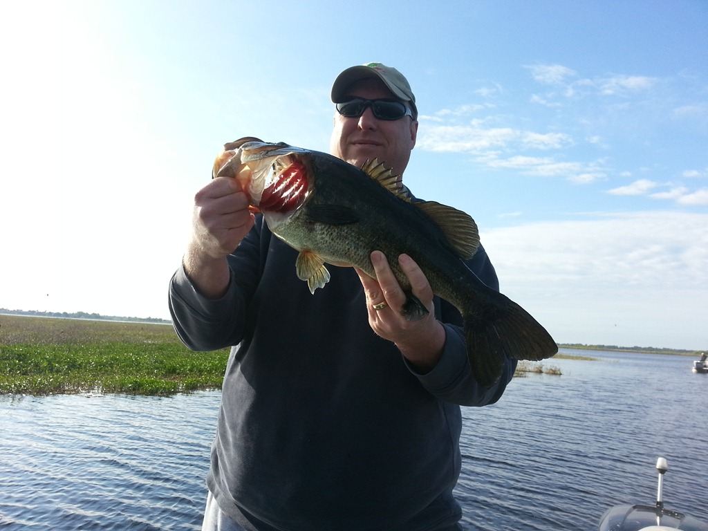 Bass fishing lake toho orlando bass fishing guides for Bass fishing in florida